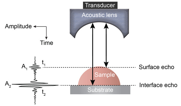 High-Frequency Time-Resolved Scanning Acoustic Microscopy